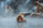 自然の景色が楽しめる!宮崎県の山の中にある温泉【西米良温泉】